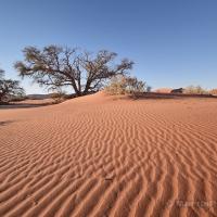 Čtenářský cestopis –Martin Pluhař | Africká zima