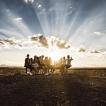 Africa Burn | Foto Marek Musil