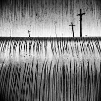 Šibeniční rovina | Foto Markéta Butalová