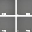 Nikkor Z DX 16–50 mm f/3,5–6,3 VR –vinětace –ohnisko 50 mm