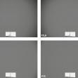 Nikkor Z DX 50–250mm f/4,5–6,3 VR –vinětace –ohnisko 100 mm