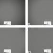Nikkor Z DX 50–250mm f/4,5–6,3 VR –vinětace –ohnisko 200 mm