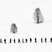 Nikon kalendář 2013 – prosinec | Foto Jan Watzek – Zimní krajinou