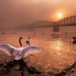 Nikon kalendář 2020 –Pozdrav slunci | foto Peter Čech