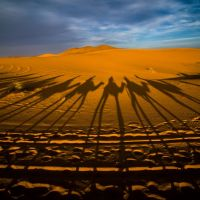 Nikon kalendář 2020 –semifinále | Sahara, foto Jana Kupčáková
