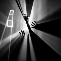 Nikon kalendář 2020 –semifinále | Touch & catch the light, foto Martina Mlčúchová