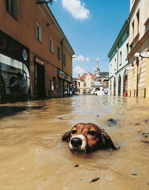 czech streets sex pod vodou