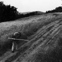 Vizovice, Morava,1988, Copyright V. Dukat, NL