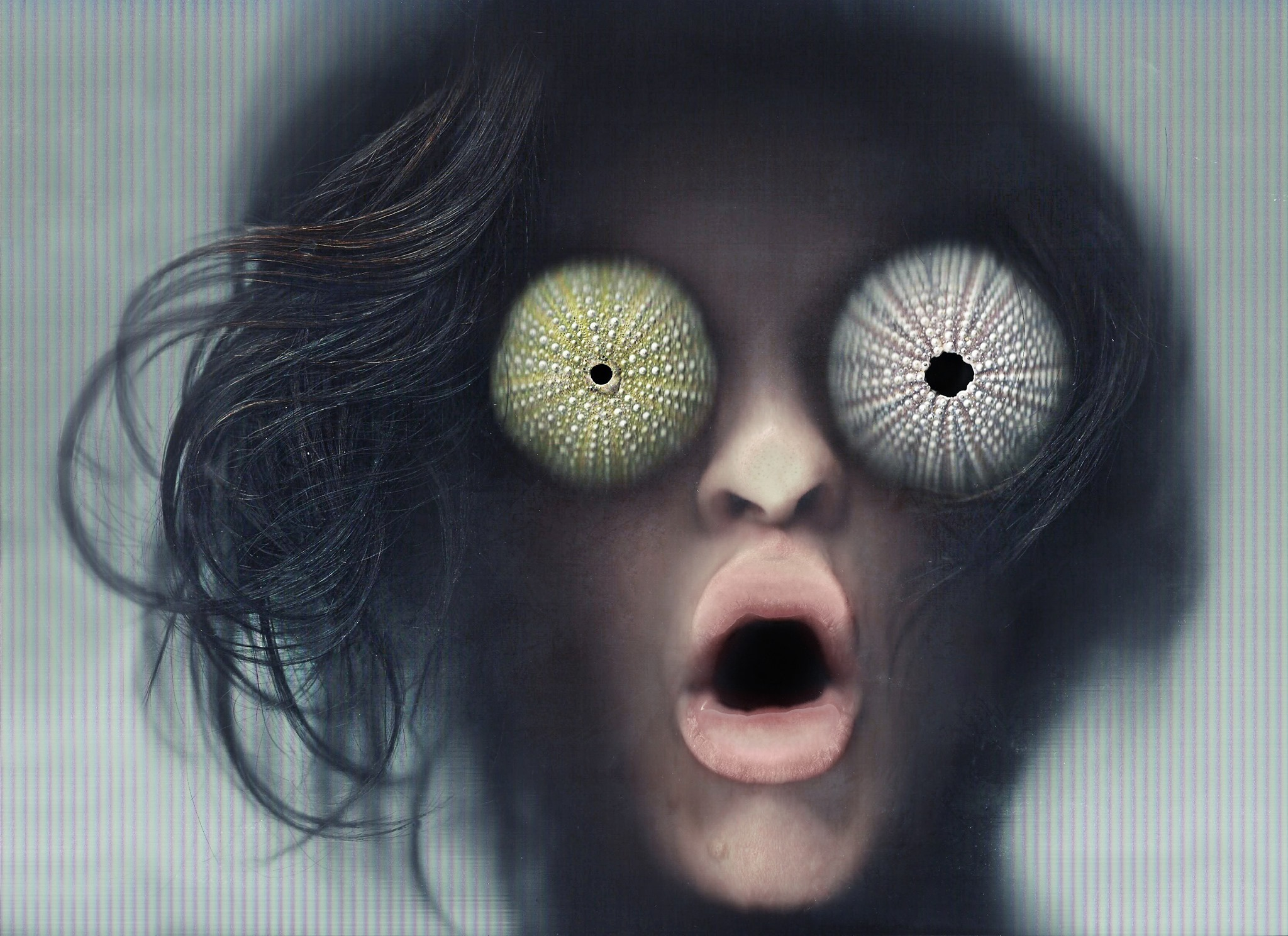 Medúza | Foto Michaela Petřek Linhartová