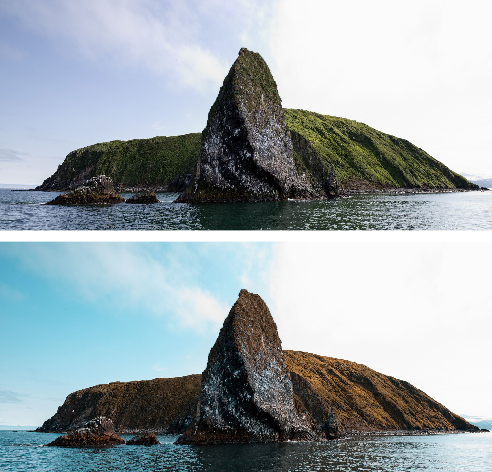 Posun barev před a po úpravě | Zdroj foto Zoner software