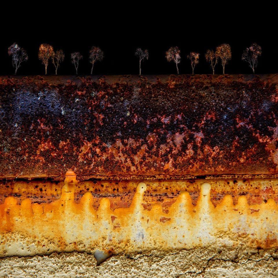 Vítězná fotografie 3. kola soutěže Fotka měsíce Nikonblogu 2020: Nad a Pod | Foto Markéta Butalová