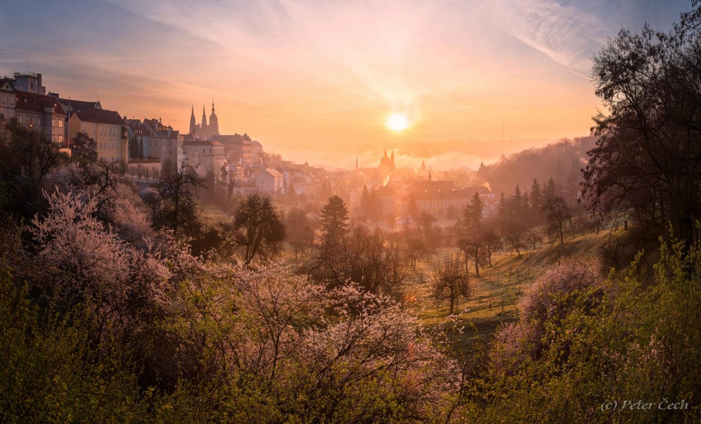 Jar na Petříně