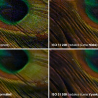 Nikon Z 5 –test šumu –ISO 51 200