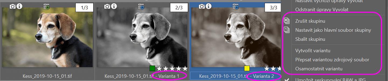 Vytváření více variant fotografií v ZPS X