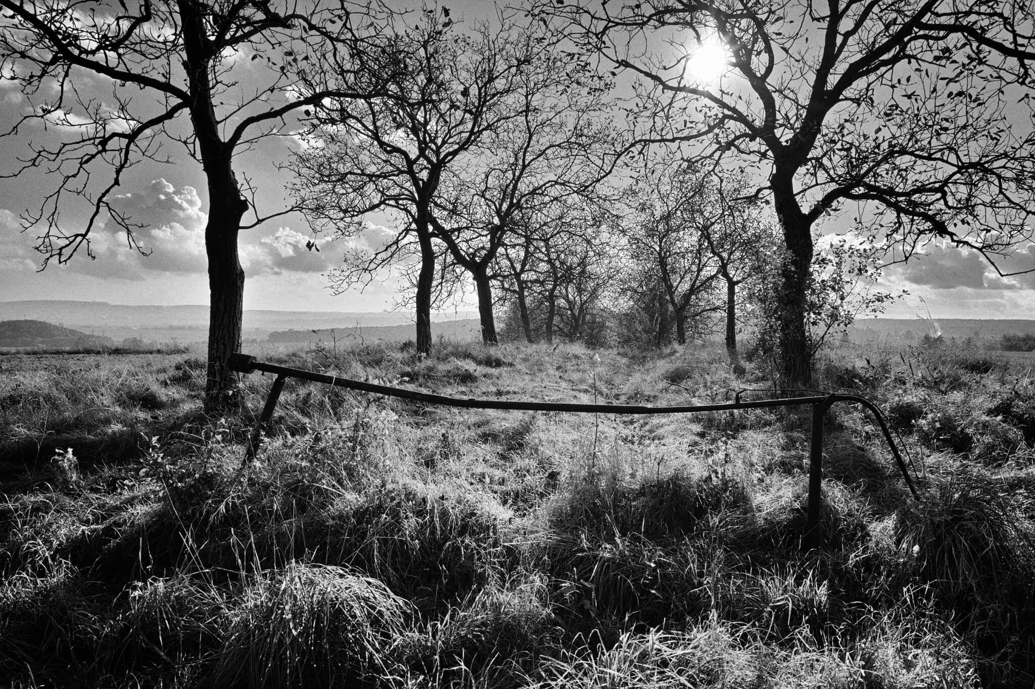 Svět je barevný, ale černobílá fotografie je nesmrtelná | Nikon Z 50 + Nikkor Z DX 16–50 mm f/3,5–6,3 VR | 16 mm, 1/2 000 s, F5,6, ISO 100