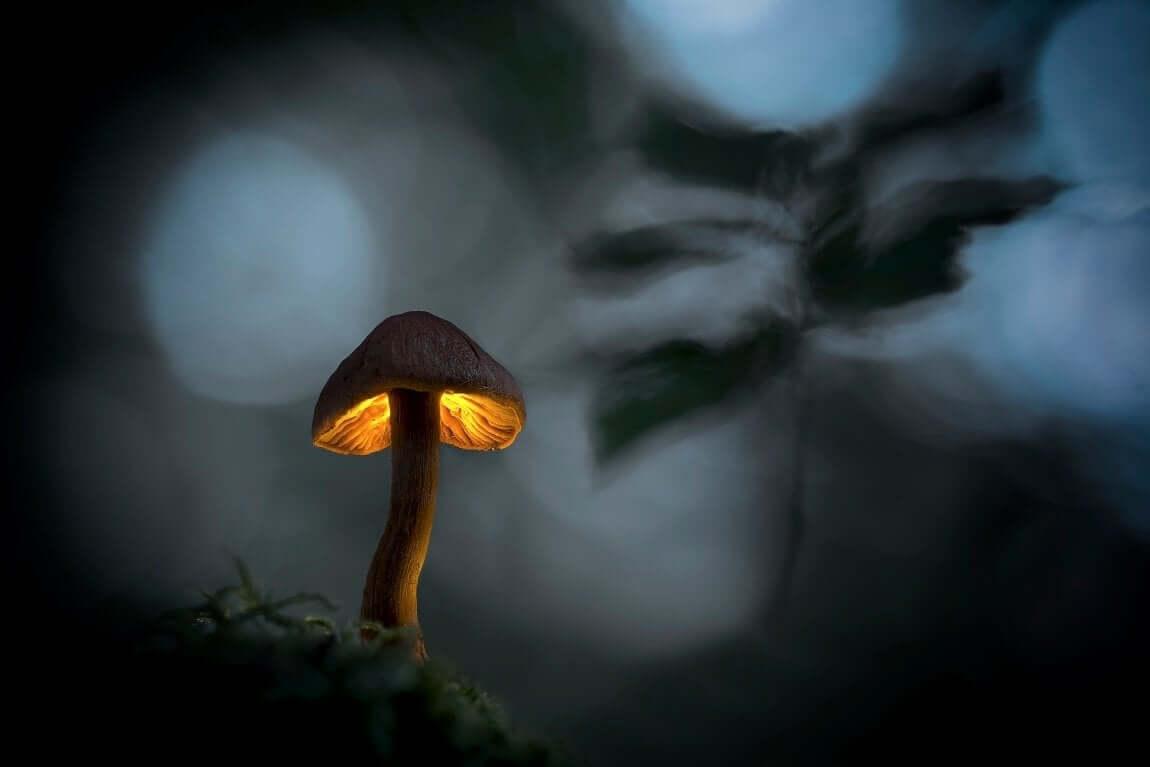 Jednou večer, když se setmí | Foto Marek Ujčík