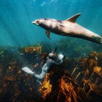 A takhle mě s Malinkou vyfotil George. Plavat na dně v kelpu a čekat na její defilé bylo jednou z nejhezčích činností, které jsem při fotografování kdy dělal. | Foto George Karbus