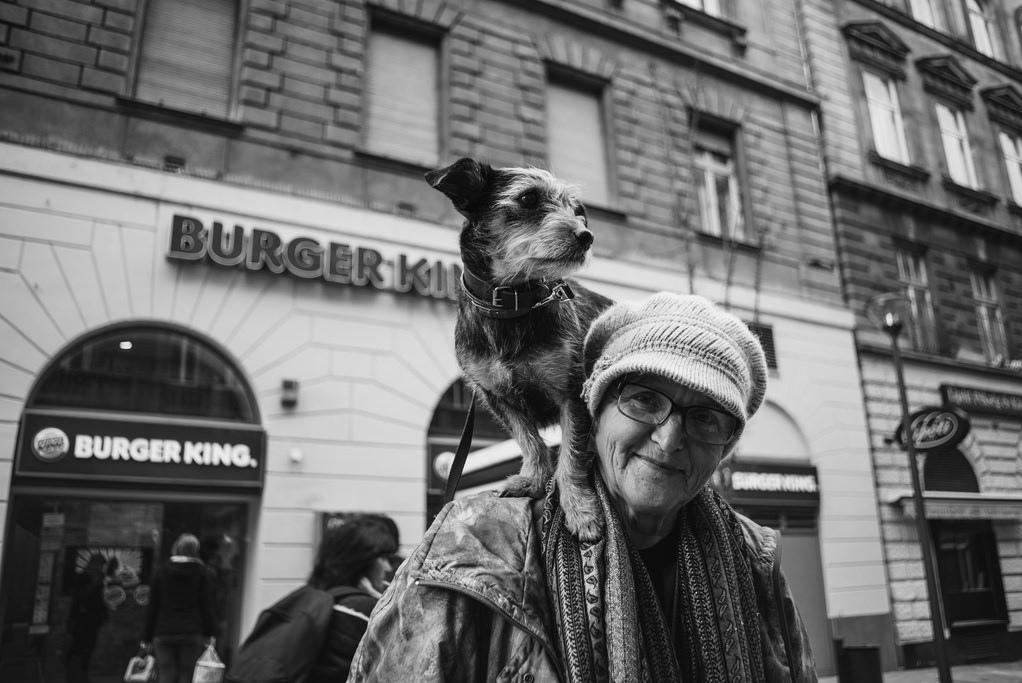 Budapest King | Foto Michaela Klanicová