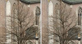 Nikon D800 vs D800E