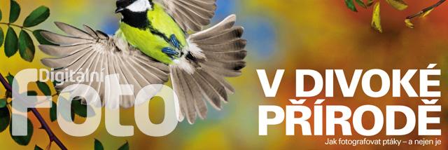 Květnové Digitální foto o focení wildlife, zátiší i portrétů. A rozhovor s Bruce Davidsonem jako návdavek