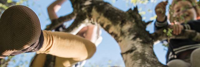 Čelem vzad! Strnulá květnová Fotka měsíce Nikonblogu