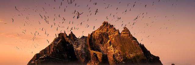 Příběhy divokého oceánu George Karbuse v Nikon Photo Gallery