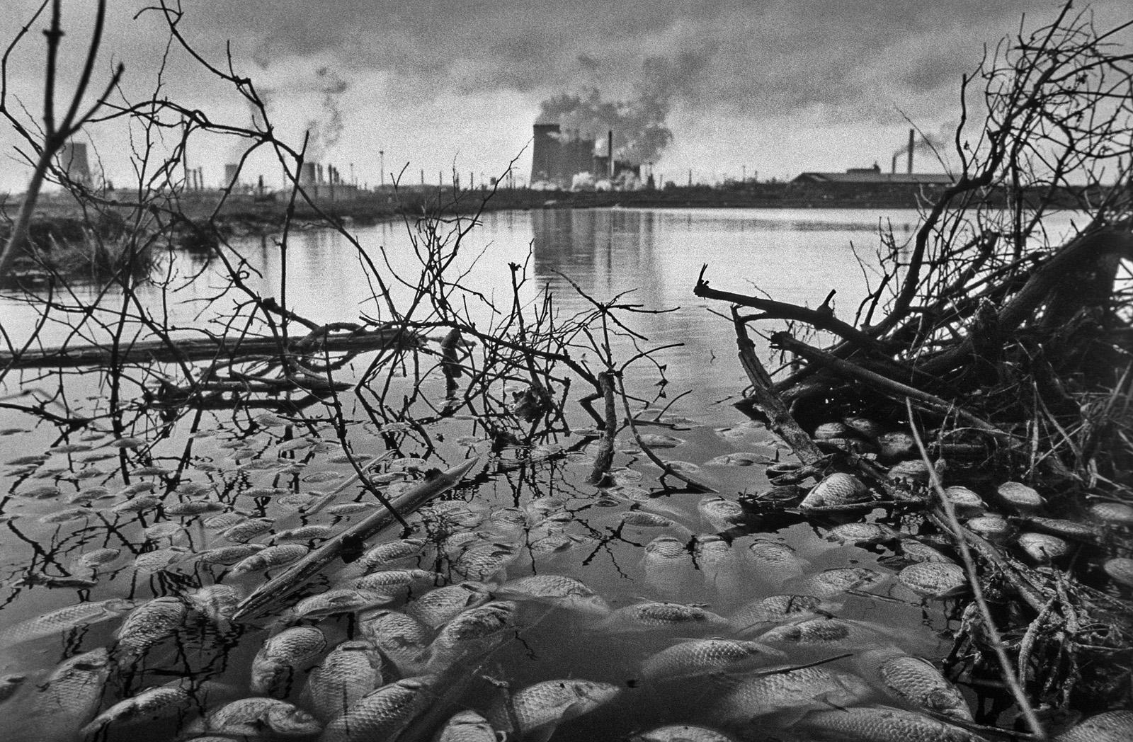 Z cyklu Příběh sedláka Rajtera   Foto Ibra Ibrahimovič
