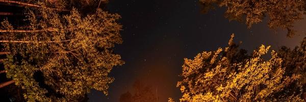 JSEM-Fotka-tydne-Nikonblogu-37_perex
