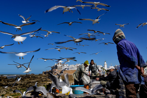 Fish market_5 / Foto Jarek Rybák
