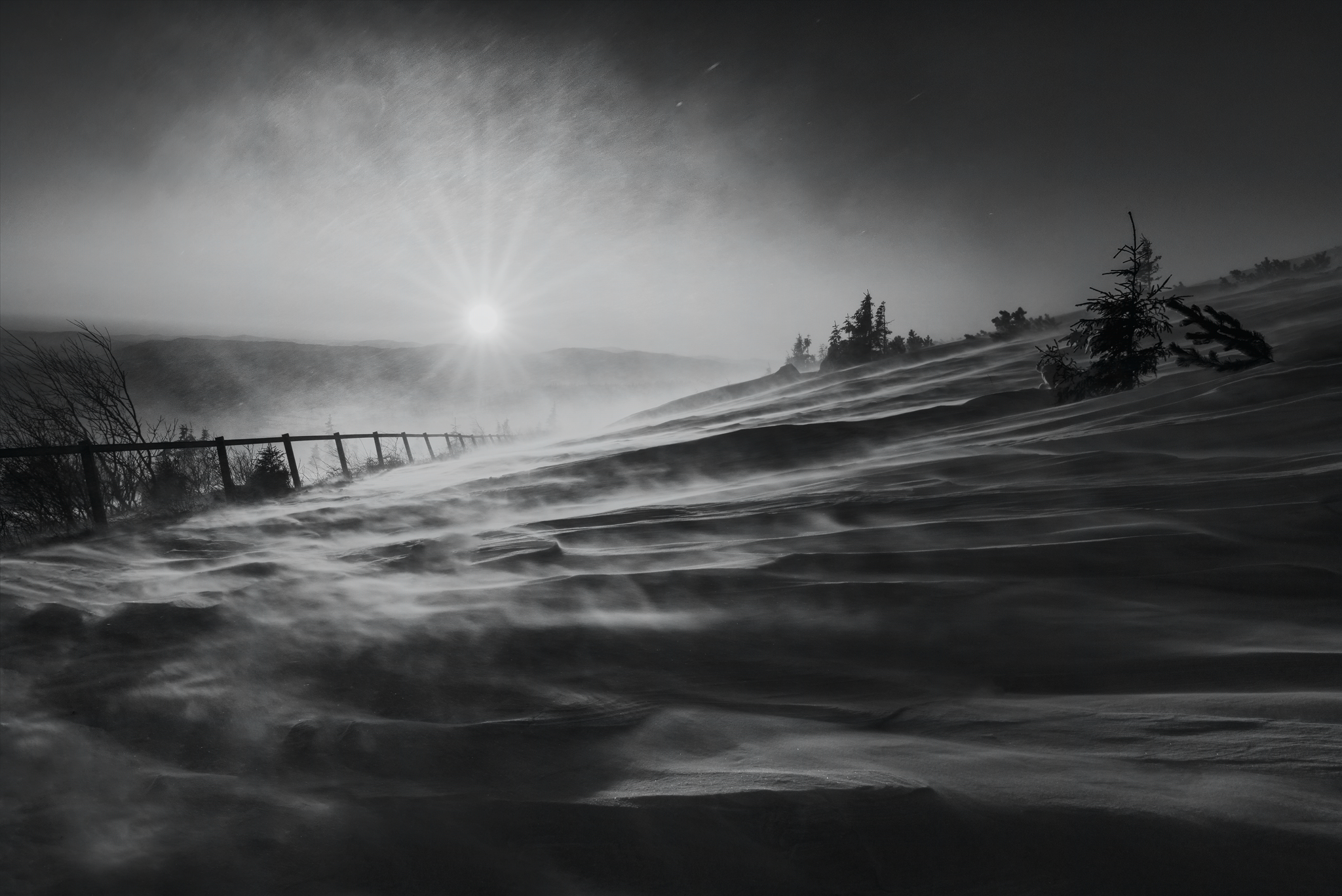 Foto Marián Kuric