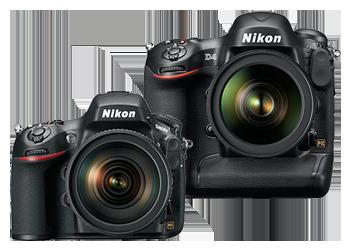 Nikon D4 a Nikon D800