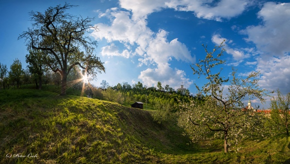 JSEM | Fotka měsíce Nikonblogu – květen 2016