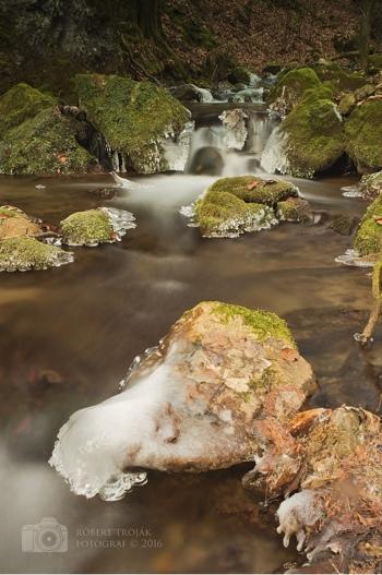 JSEM   Fotka měsíce Nikonblogu – květen 2016