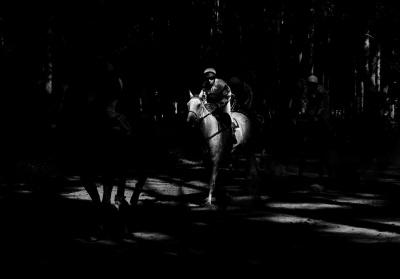 Ze série Steeplechase | Foto Roman Vondrouš