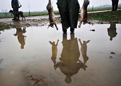 Z cyklu Myslivecký lov | Foto Roman Vondrouš